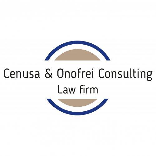 Cenusa & Onofrei Consulting Logo