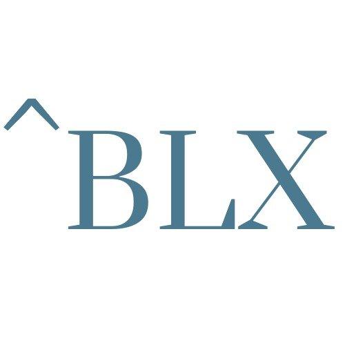 BLX GROUP Logo